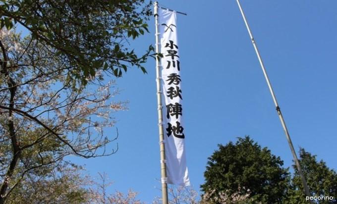 松尾山に総大将を - 治部どの奇妙な戦い photo by http://sekigaharamap.com/mathuoyama/