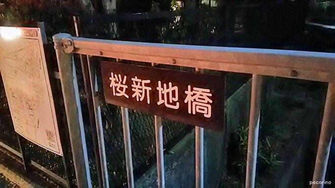 桜新地(枚方市)を文化財に ~遊郭跡地は黒歴史ではない~